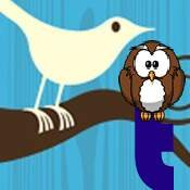 Twiiter Mistakes makes owl