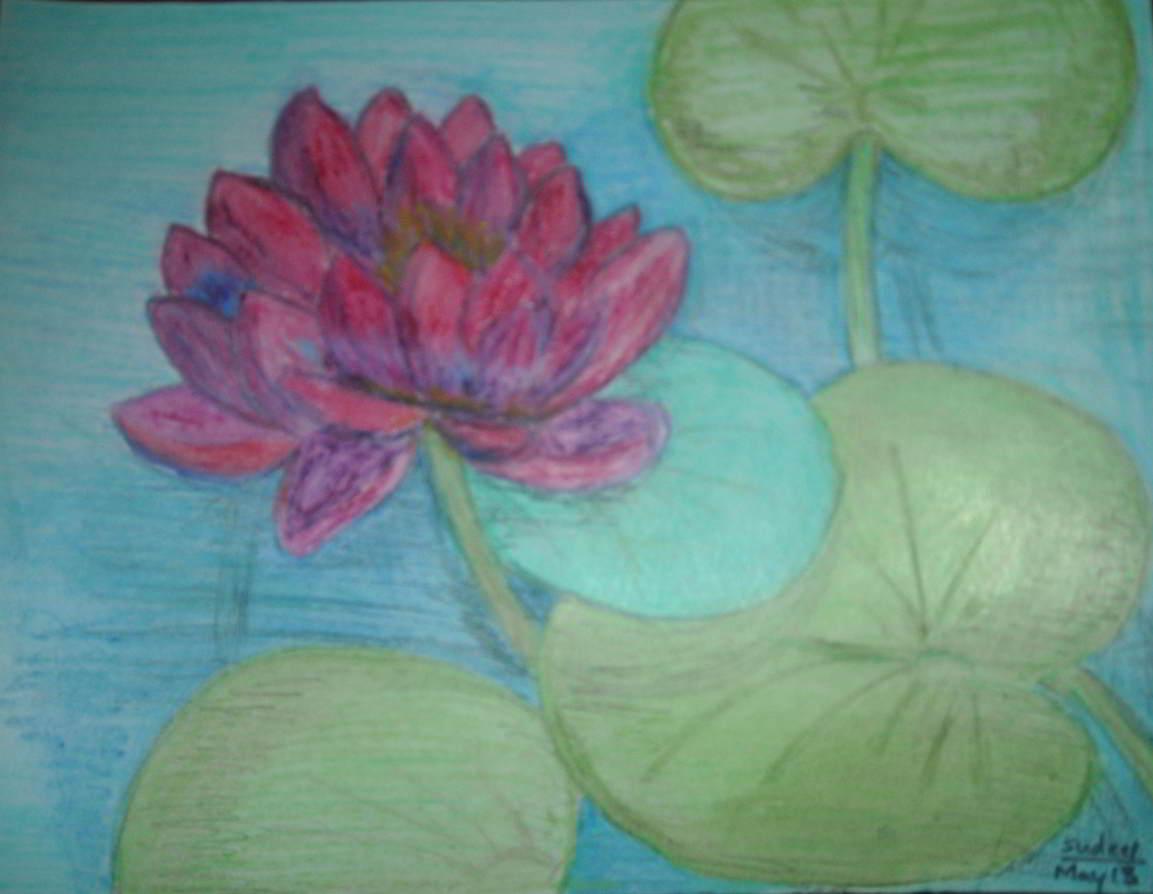 Lotus painting in pastels